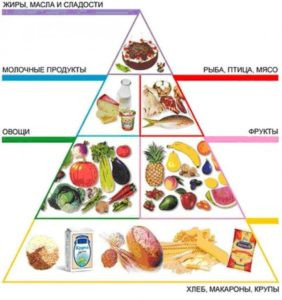 Правила питания для здорового образа жизни